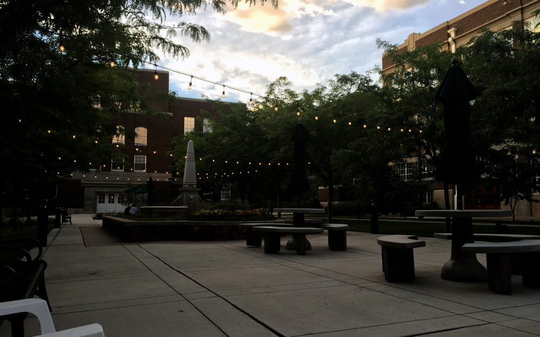Summer Evening in the Courtyard