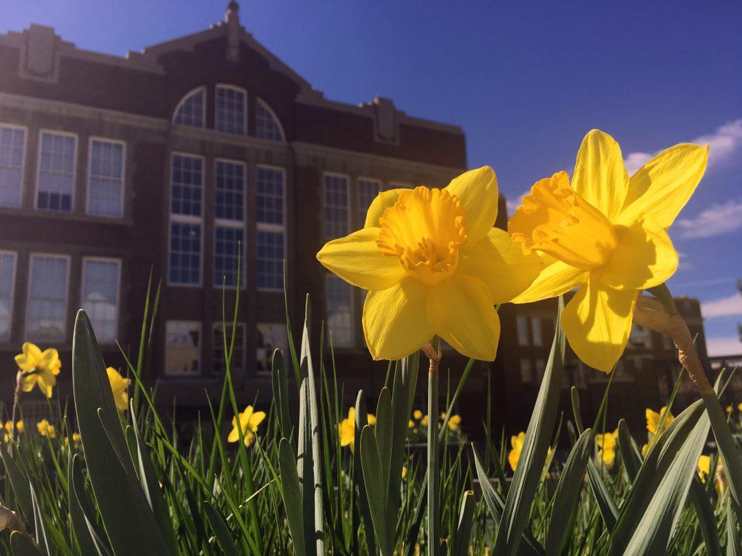 Spring at The Lofts